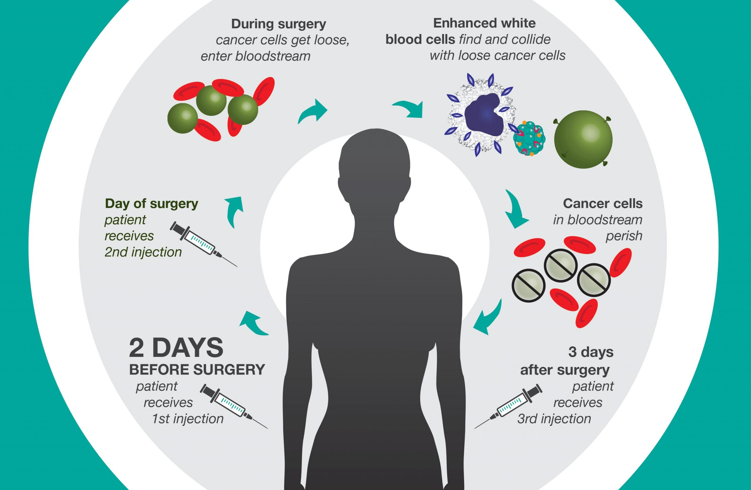 cancer death infographic